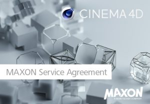 Maxon Service Agreement